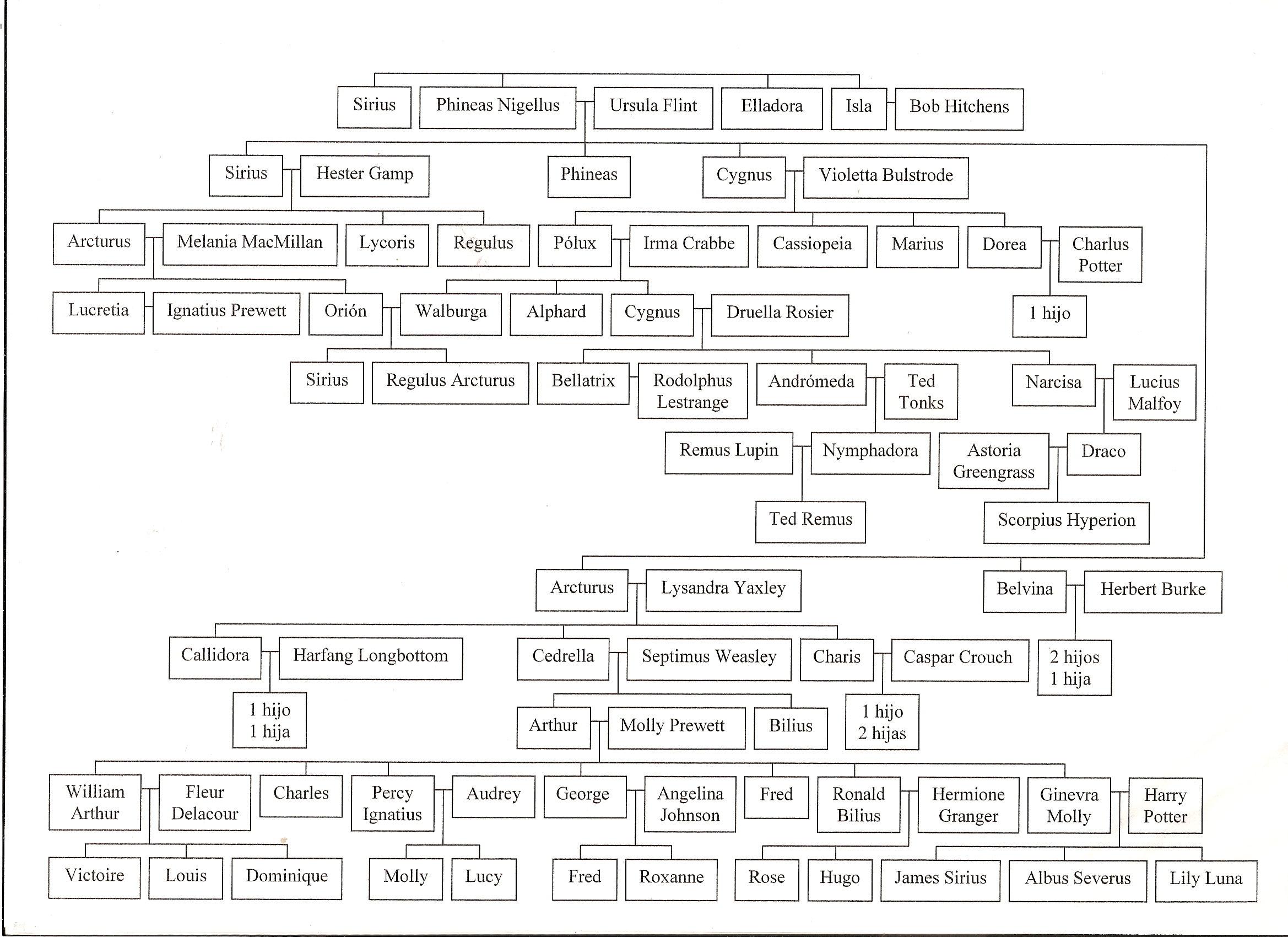 Harry Potter y la Orden del Fénix (película) - Wikipedia